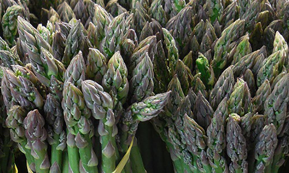Spelt and grilled asparagus salad with fresh herb vinaigrette, Entrées